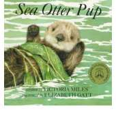 Board Books :Sea Otter Pup: Board Book