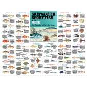 Posters :Saltwater Sport Fish of the Pacific: San Francisco to Cabo San Lucas POSTER