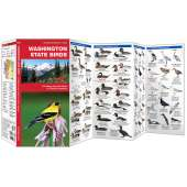 Washington Birds (Folding Pocket Guide)