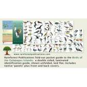 Galapagos Islands Birds Field Guide