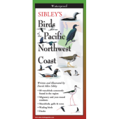 Bird Identification Guides :Sibley's Birds of Pacific NW Coast