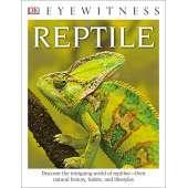 Dinosaurs & Reptiles :DK Eyewitness Books: Reptile