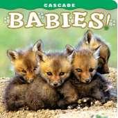 Baby Animals :Cascade Babies!