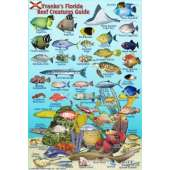 Fish & Sealife Identification Guides :Florida Reef Creatures Guide LAMINATED CARD