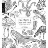 Coloring Books :Field Guide: Creatures Great and Small: 35 prints to color
