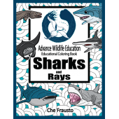 Sharks :Sharks and Rays Educational Coloring Book