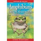Reptile & Mammal Identification Guides :Amphibians of Oregon, Washington and British Columbia