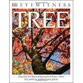Environment & Nature :DK Eyewitness Books: Tree: Discover the Fascinating World of Trees from Tiny Seeds to Mighty Forest Giants