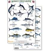 Books for Aquarium Gift Shops :Hawaii Sport Fish Guide (Laminated 2-Sided Card)