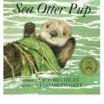 Board Books, Sea Otter Pup: Board Book