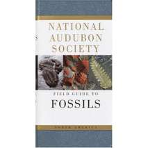 Rockhounding & Prospecting :National Audubon Society Field Guide to North American Fossils