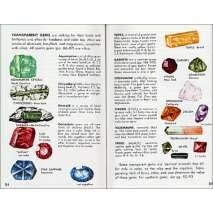 Rocks, Minerals & Geology Field Guides :Rocks, Gems and Minerals (Golden Guide)