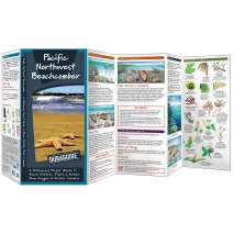 Pacific Northwest Beachcomber (Folding Pocket Guide)