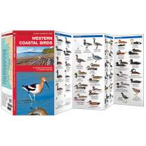 Bird Identification Guides :Western Coastal Birds