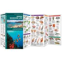 Books for Aquarium Gift Shops :Hawaii Seashore Life