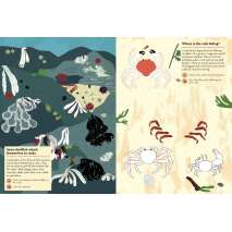 Fish, Sealife, Aquatic Creatures :My Nature Sticker Activity Book: At the Seashore