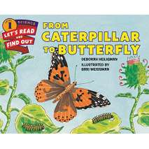 Butterflies, Bugs & Spiders, From Caterpillar to Butterfly