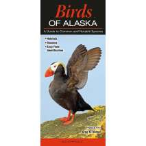 Bird Identification Guides, Birds of Alaska