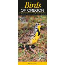 Bird Identification Guides, Birds of Oregon