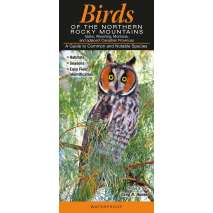 Bird Identification Guides :Birds of the Northern Rocky Mountains
