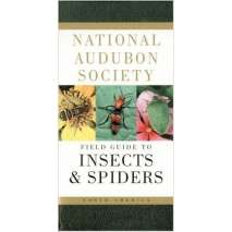 Insect Identification Guides, National Audubon Society Field Guide to North American Insects and Spiders