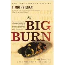 American History, The Big Burn: Teddy Roosevelt and the Fire that Saved America