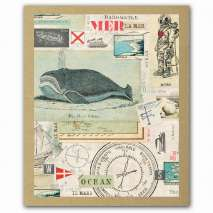 Journals, Cards & Stationary, Nautical Nostalgia GreenNotes, Eco-Friendly Boxed Notecard Set Stationery