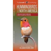 Bird Identification Guides, Hummingbirds of North America: The Eight Most Familiar North American Species