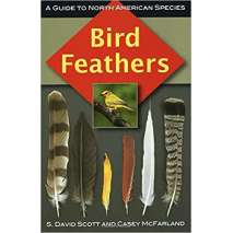 Birding, Bird Feathers: A Guide to North American Species