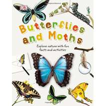 Butterflies, Bugs & Spiders, Butterflies and Moths