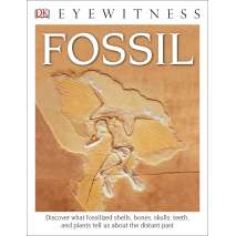 Dinosaurs, Fossils, Rocks & Geology, DK Eyewitness Books: Fossil