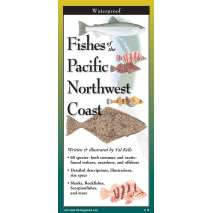 Fish & Sealife Identification Guides, Fishes of The Pacific Northwest Coast
