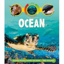 Fish, Sealife, Aquatic Creatures, Life Cycles: Ocean