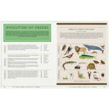 The Animal World: The Amazing Connections and Diversity Found in the Animal Family Tree