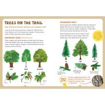 Children's Outdoors :Backpack Explorer: On the Nature Trail: What Will You Find?