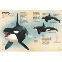 Books for Aquarium Gift Shops :Animal Journal: Marine Animals of the World: Notes, drawings, and observations about animals that live in the ocean