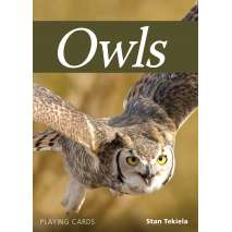 Playing Cards, Owls Playing Cards