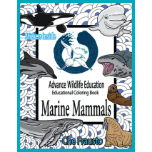 Marine Mammals :Marine Mammals Educational Coloring Book