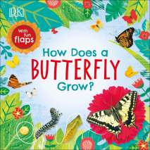 Butterflies, Bugs & Spiders :How Does a Butterfly Grow?