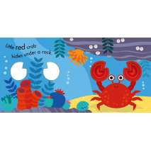 Board Books: Aquarium :Snap