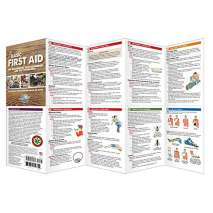 First Aid & Safety On-board :Basic First Aid for Non-Medical First Responders and SAR Volunteers