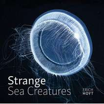 Fish, Sealife, Aquatic Creatures :Strange Sea Creatures