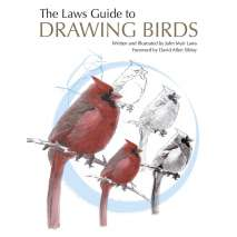Birding :The Laws Guide to Drawing Birds