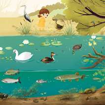 Environment & Nature :Take me Home - Waters of the World