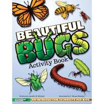 Butterflies, Bugs & Spiders :Beautiful Bugs Activity Book: An Introduction to Insects for Kids