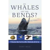 Ocean & Seashore, Do Whales Get the Bends?