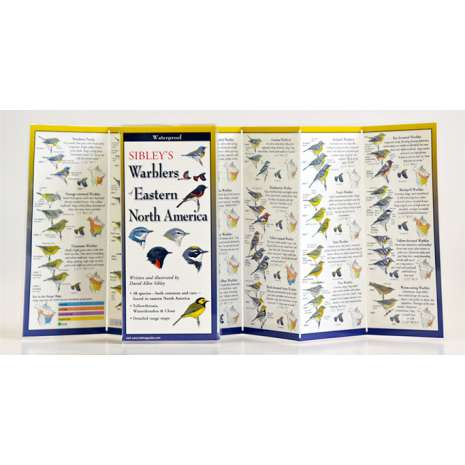 Birding :Sibley's Warblers of Eastern North America (Folding Guides)