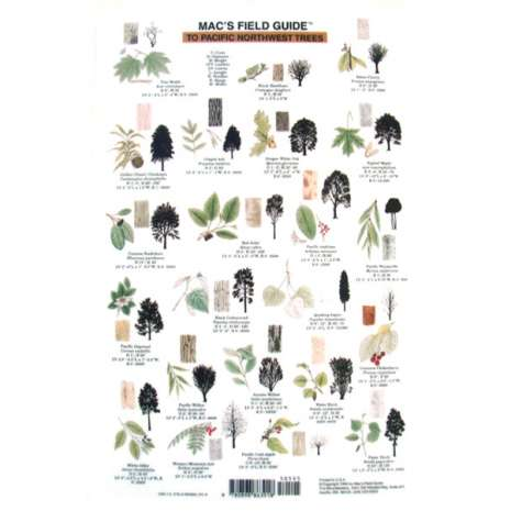 Pacific Northwest Field Guides :Northwest Trees  (Laminated 2-Sided Card)