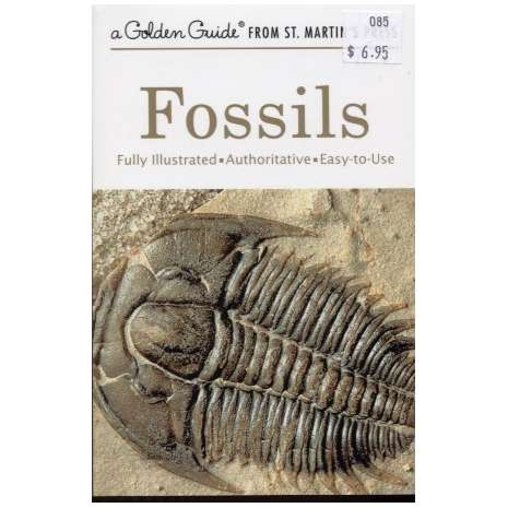 Dinosaurs & Reptiles :Fossils (Golden Guide)