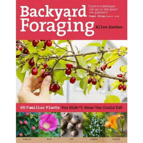 Foraging :Backyard Foraging: 65 Familiar Plants You Didn't Know You Could Eat